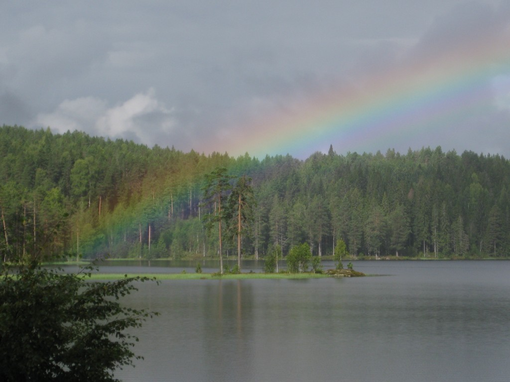 Rainbow in the Deep green Forests of Sigdal. Photo Olaug Walding 2011